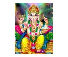 India'S No.1 Astrologer 09417305245